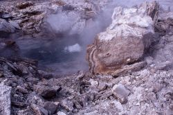Porkchop Geyser after its explosion on September 5, 1989 - Norris Geyser Basin Photo