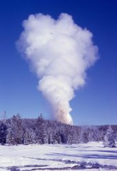 Steamboat Geyser eruption - Norris Geyser Basin Photo
