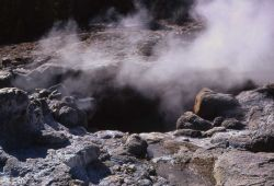 North vent of Steamboat Geyser - Norris Geyser Basin Photo
