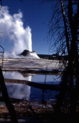 Castle Geyser with pool reflecting its eruption - Upper Geyser Basin Photo
