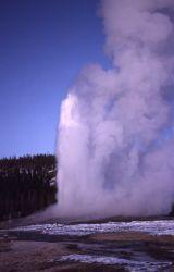 Old Faithful Geyser erupting - Upper Geyser Basin Photo