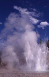 Grand Geyser - Upper Geyser Basin Photo