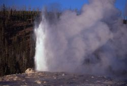Old Faithful Geyser - Upper Geyser Basin Photo