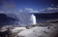 Lakeshore Geyser - West Thumb Geyser Basin Photo