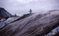Palette Spring - Mammoth Hot Springs Photo