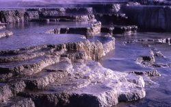Opal Terrace - Mammoth Hot Springs Photo