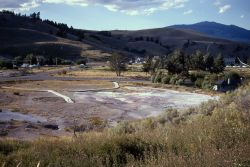 Opal Terrace - Mammoth Hot Springs Photo
