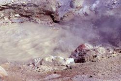 Growler Spring - Hot Springs, Norris Geyser Basin Photo