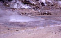Scummy Pool - Hot Springs, Norris Geyser Basin Photo
