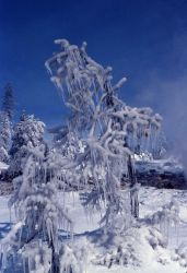Ice formations from thermal steam Photo