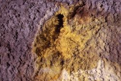 Sulfur deposits at a fumerole in Monument Geyser Basin - Mineral deposits Photo