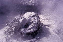 Mud Pot - Unknown area Photo