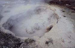 Norris Pool - Mud Pots, Upper Geyser Basin Photo