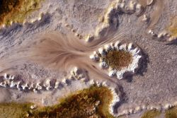 Filamentous bacteria & algae in the Upper Geyser Basin Photo