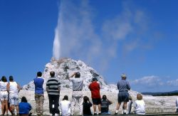 Visitors at White Dome Geyser Photo