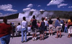 Visitors watching Old Faithful eruption Photo