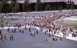 Crowds around Old Faithful Photo