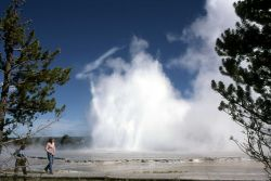 Great Fountain Geyser (Rick Huntchinson behind the tree on left) Photo
