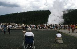 Visitor in wheelchair viewing Old Faithful Geyser Photo