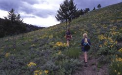 Hikers on Rescue Creek trail Photo