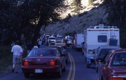 Traffic jam in Gardner Canyon Photo