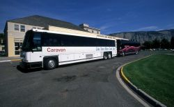 Tour busses in Mammoth Hot Springs Photo