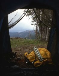 View out of a tent Photo