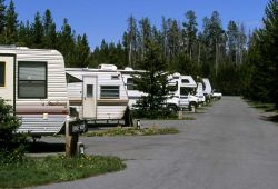 RVs at Fishing Bridge RV Park Photo