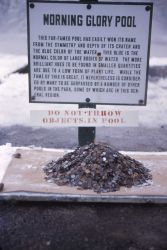 Old Morning Glory sign & pile of coins fished from it Photo