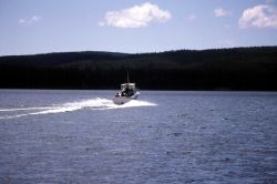 Fishing guide boat, The Grady White, on Yellowstone Lake during a Yellowstone Association birding class Photo
