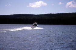 Fishing guide boat, The Grady White, on Yellowstone Lake during a Yellowstone Association birding class Photo