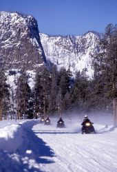 Snowmobiles on West Entrance road Photo