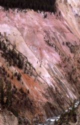 Grand Canyon of Yellowstone & the Yellowstone River Photo