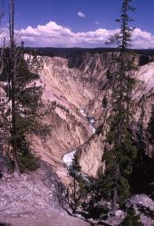Grand Canyon of Yellowstone & the Yellowstone River Photo
