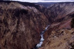 Grand Canyon of Yellowstone as seen from Inspiration Point Photo