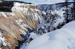 Grand Canyon of Yellowstone in the winter Photo