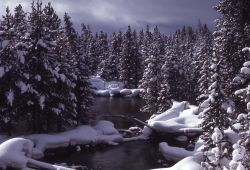Gibbon River with snow near Norris campground Photo