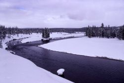 Snake River Photo