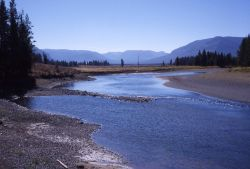 Yellowstone River looking south in the Thorofare area Photo
