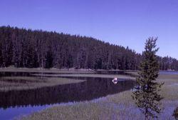 Chipmunk Creek Photo