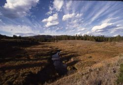 Cascade Creek Photo