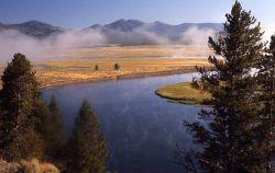 Yellowstone River in Hayden Valley Photo