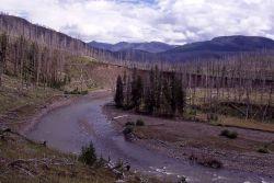 Lamar River above Miller Creek Photo