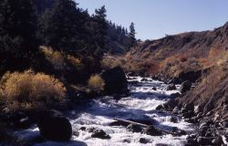 Gardner River north of Mammoth Hot Springs Photo