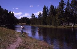 Yellowstone River with fisherman Photo