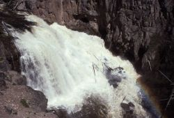 Gibbon Falls during spring run off Photo