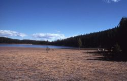 Dryad Lake Photo
