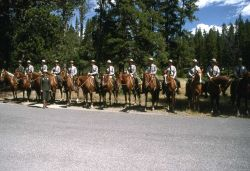 Dedication of the Museum of the National Park Ranger at Norris (mounted rangers with Lorraine Mintzmeyer) Photo