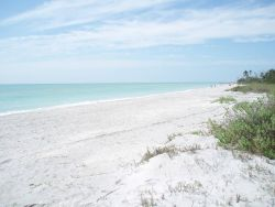 Sanibel Island - U.S. Photo