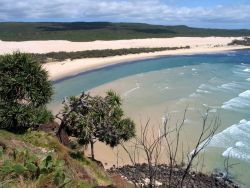 Fraser Island - Australia Photo